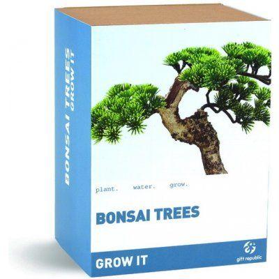 Vypěstuj si bonsai