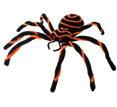Pavouk černo-oranžový